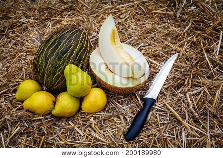 A whole and cut in half and sliced ripe melons lie on the straw next to them a few yellow pears and a knife in stainless steel with a black handle.