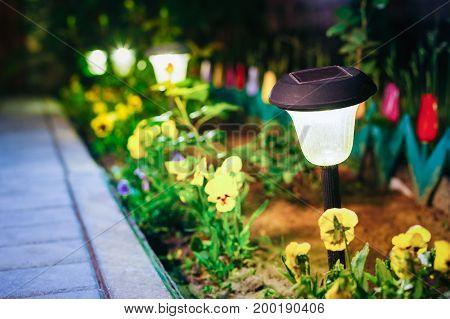 Solar Garden Light, Lanterns In Flower Bed. Garden Design. Solar Powered Lamp.