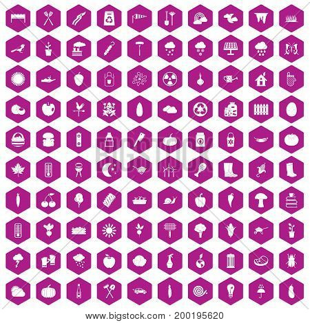 100 vegetables icons set in violet hexagon isolated vector illustration