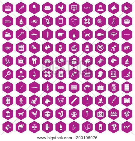 100 veterinary icons set in violet hexagon isolated vector illustration