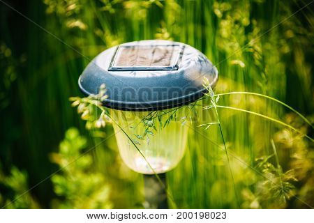 Small Garden Light, Lantern In Green Grass. Garden Design. Solar Powered Lamp.