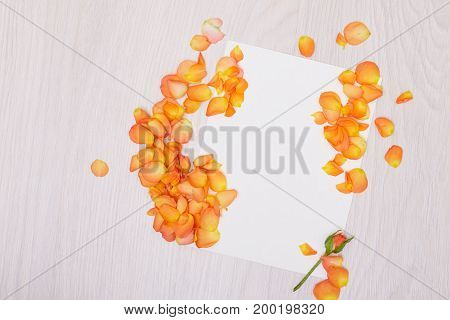 Creative mock up layout made of roses  with copy space on table homemade flat lay. Empty sheet of paper. Mockup with a card and orang rose