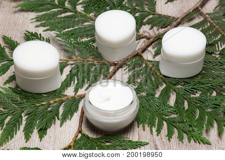 Natural skin care products. Jars of moisturizing creams on green leaves