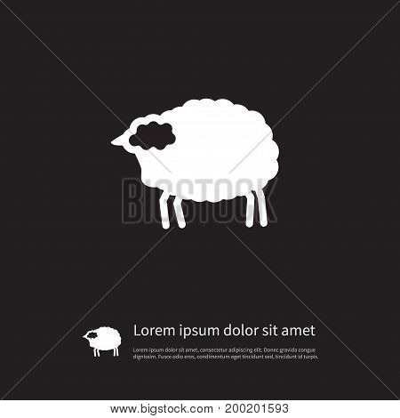 Lamb Vector Element Can Be Used For Livestock, Lamb, Sheep Design Concept.  Isolated Livestock Icon.