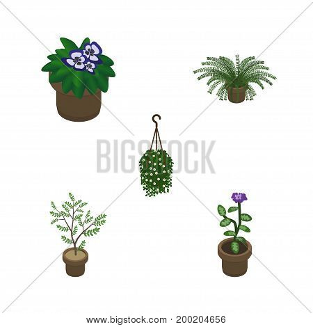 Isometric Plant Set Of Flower, Plant, Blossom And Other Vector Objects