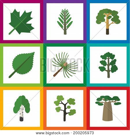Flat Icon Ecology Set Of Oaken, Wood, Garden And Other Vector Objects