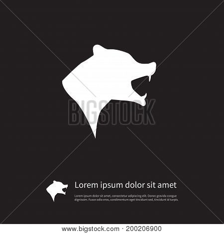Grizzly Vector Element Can Be Used For Grizzly, Bear, Animal Design Concept.  Isolated Wild Icon.