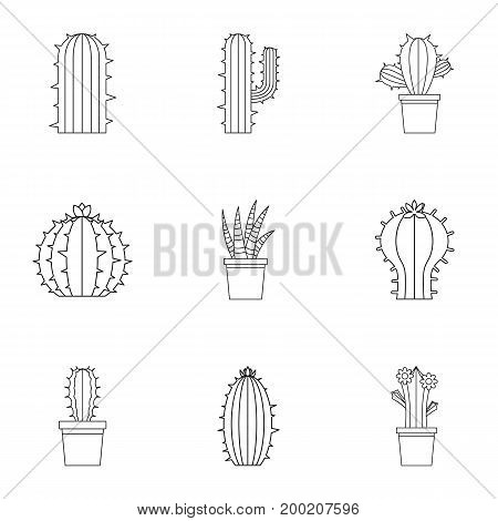 Succulent icon set. Outline style set of 9 succulent vector icons for web isolated on white background