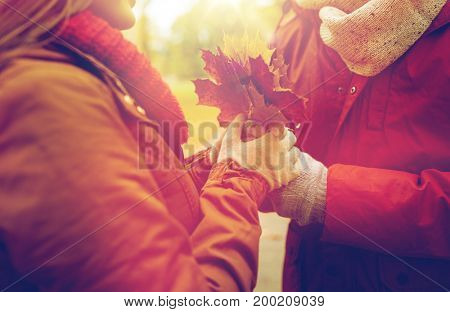 love, relationships, season and people concept - close up of happy couple with autumn maple leaves