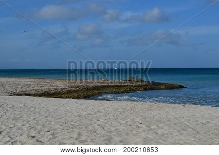 Secluded Eagle Beach in Aruba with lava rock extending into the ocean.