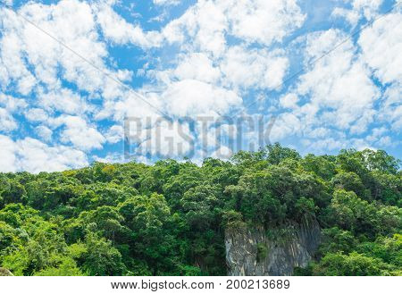 forest mountain landscape sunlight in the summer on blue sky background with copy space add text