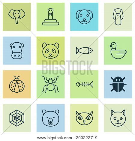 Zoo Icons Set. Collection Of Fish, Cobweb, Kine And Other Elements