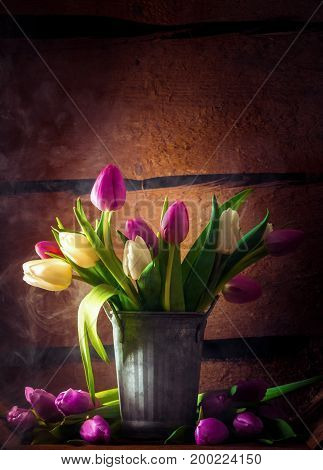 Rustic Still Life with fresh Tulips in a bucket