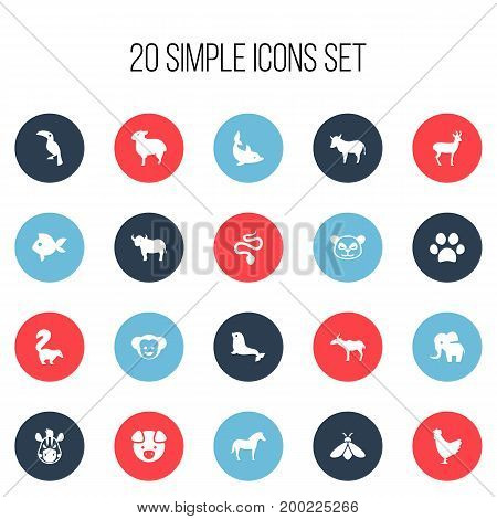 Set Of 20 Editable Zoology Icons. Includes Symbols Such As Toucan, Forepaw, Lamb And More