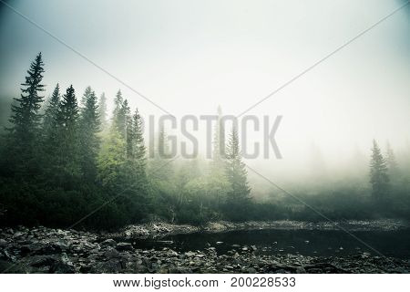 A Beautiful Mountain Lake In A Fog In Tatry, Slovakia. Low Saturation Retro Style