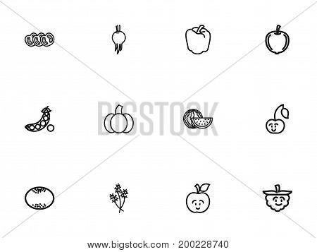 Set Of 12 Editable Cooking Outline Icons. Includes Symbols Such As Sweet Pepper, Beet, Fresh Fruit And More