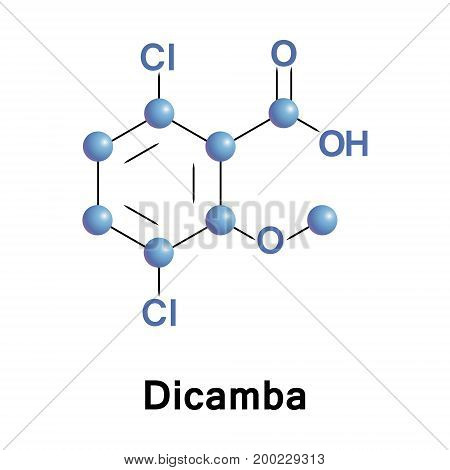 Dicamba is a broad-spectrum herbicide. This chemical compound is an organochloride and a derivative of benzoic acid.