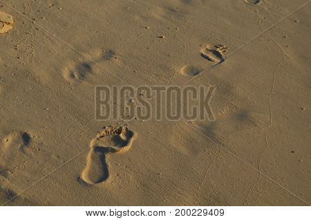 Imprints of footprints in the soft beach sand.