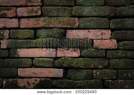 Old brick wall texture background copy space
