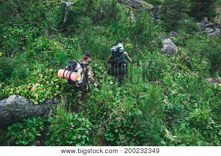 Friends Walking With Backpacks In Woods From Back