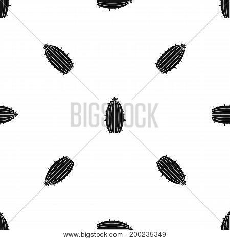 Mammillaria bocasana pattern repeat seamless in black color for any design. Vector geometric illustration