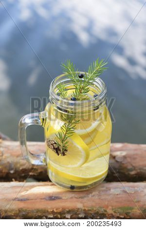 Infused water with lemon and blueberries cone and pine needles