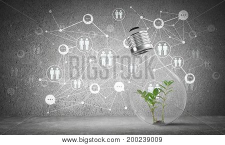 Lightbulb with green plant inside placed against sketched social network system on grey wall. 3D rendering.