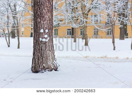 Smiling tree face on Christmas with copy-space. Strange snowman