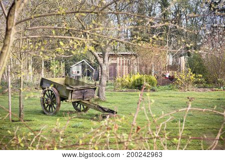 Vintage dray on autumn farm. Old-fashioned cart in garden. Garden decoration.