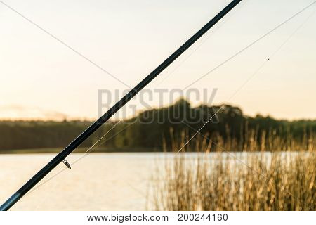 Rod and Line. Fishing on the lake.