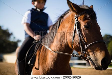 Boy riding a horse in the ranch on a sunny day