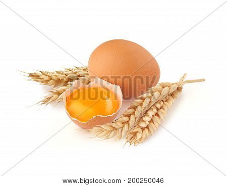Yolk of egg in broken eggshell whole egg and wheat's spikelets on the white