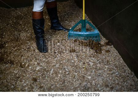 Low-section of man using broom to clean the stable