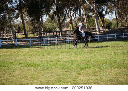 Male jockey riding a horse in the ranch on a sunny day
