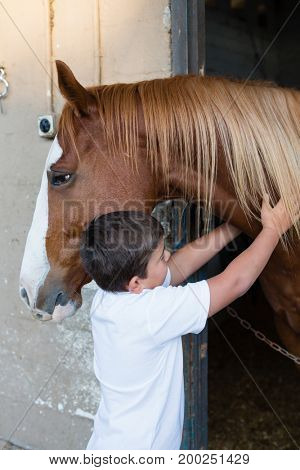 Portrait of rider boy caressing a horse