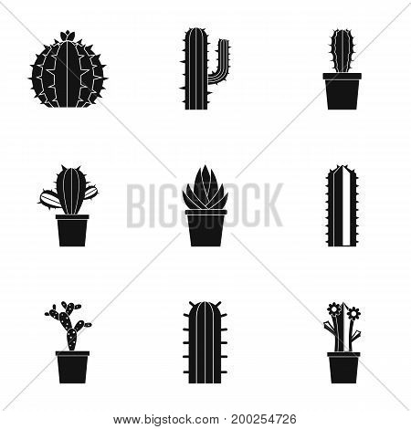 Succulent icon set. Simple style set of 9 succulentvector icons for web isolated on white background