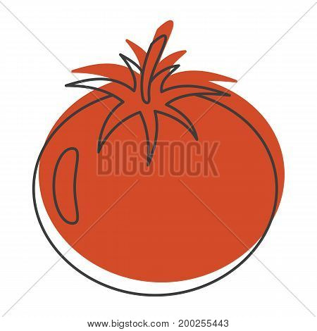 Red tomato doodle icon vector illustration for design and web isolated on white background. Tomato vector object for labels  and advertising