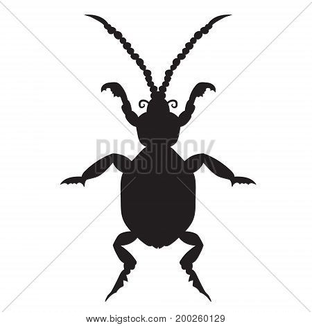 Black silhouette of a beetle on a white background. vector illustration. Hand drawing