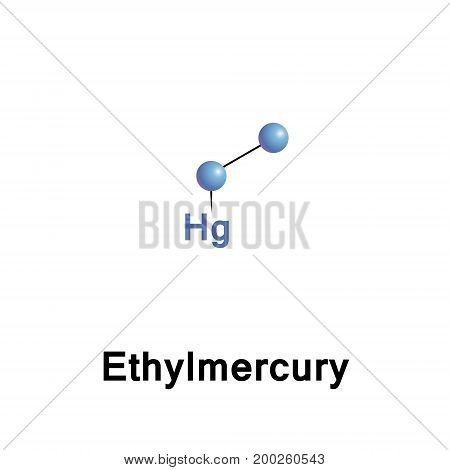 Ethylmercury composed of an organic CH3CH2- species bound to a mercury centre making it a type of organometallic cation and giving it a chemical formula is C2H5Hg