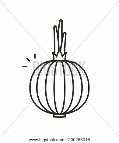 Onion line icon on white background. Vector illustration.