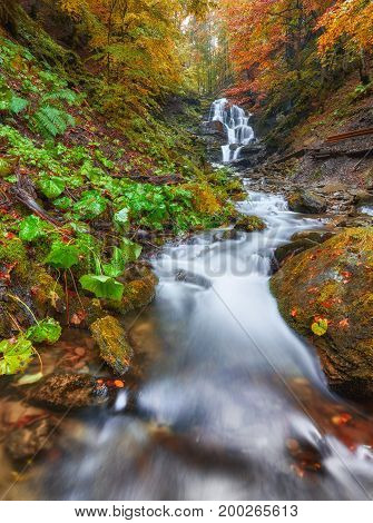 Beautiful Waterfall At Mountain River In Colorful Autumn Forest With Red And Orange Leaves At Sunset