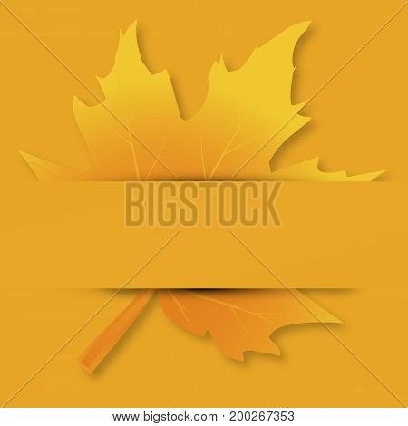 Autumn maple leaf on the card, vector art illustration.