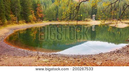 Beautiful Synevyr Lake Surrounded With Forest.