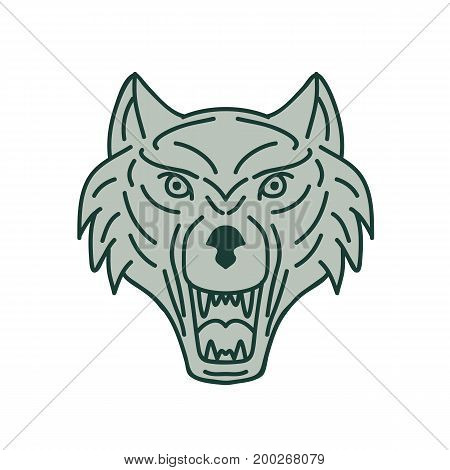 Mono line style illustration of a gray wolf head showing teeth fang viewed from front set on isolated white background done in retro style.