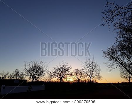 Beautiful evening twilight showing violet sky and winter trees