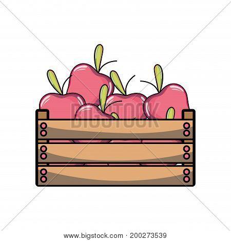 delicious apples fruits inside basket vector illustration