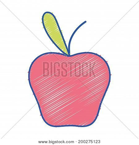 delicious apple fruit with protein nutrition vector illustration