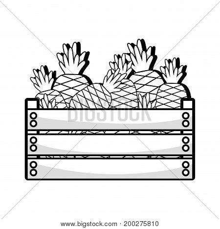line delicious pineapple fruits inside basket vector illustration