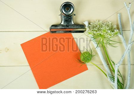 square orange note paper on clip board with Queen Anne's Lace and white twig