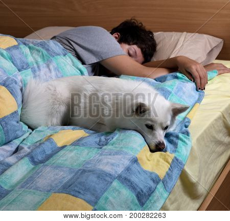Family dog sleeping in bed with teen girl in background